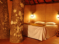 Dandeli Mist Resort